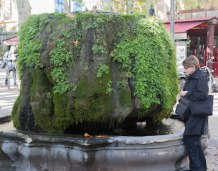 A moss and fern covered fountain in the middle of the Cours Mirabeau