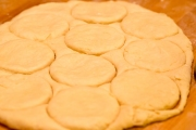 Dough cut in biscuit-sized circles