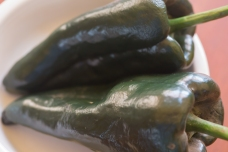 Fresh poblano chiles