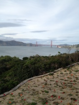 View of Marin Headlands, Golden Gate Bridge and the Presidio from Land's End
