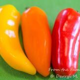 """Snacker"" mini-peppers"