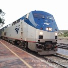 The Amtrak engine pulling in to Lamy none the worse for its encounter with a tree