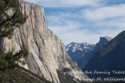 El Capitan and Half Dome in the background, Yosemite National Park