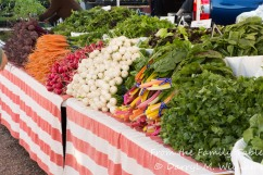 A colorful array of fresh vegetables