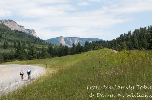 Hardy bicyclists heading up Molas Pass