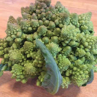A fresh head of Romanesco