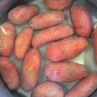 Fingerling potatoes and salt just covered with water