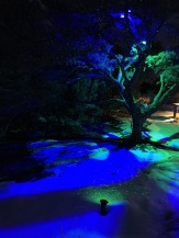 Laser lights on the snow
