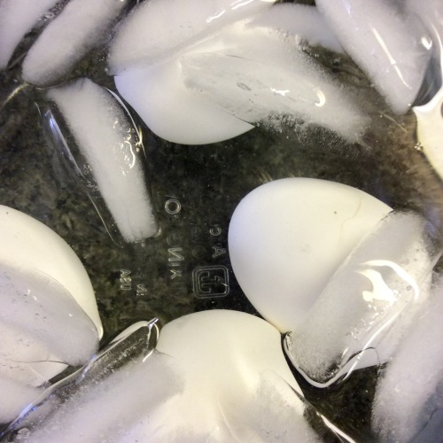 Eggs chilled in ice water for as long as they cooked