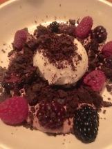 Dark chocolate pudding, summer berries, yogurt ice cream