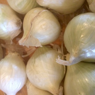 Boiling onions need to be blanched and peeled