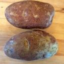 Russet baking potatoes